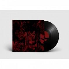 Vessel of Iniquity - The Doorway - LP