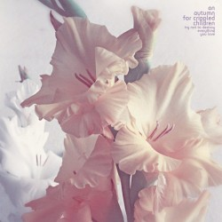 An Autumn For Crippled Children - Try not to Destroy Everything you Love - LP