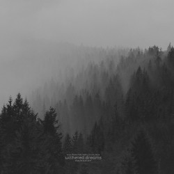 An Autumn For Crippled Children - Withered Dreams: Singles 2013 - 2017 - LP