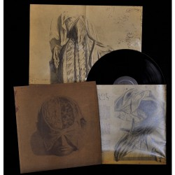 Farsot - Insects - LP