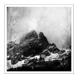 Janvier - Janvier - LP COLORED