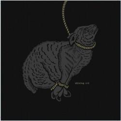 Shining & SRD - Self Titled - CD