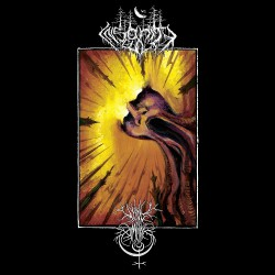 Void Omnia / Insanity Cult - Contemplation In Discordance - LP